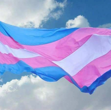 Global transgender safety tasks force USA Inc