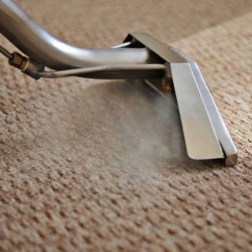 Berber carpet being steam cleaned in a Ellenton home.