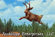 Jackalope Enterprises