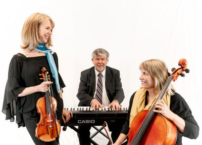 String duo, piano/string duo, or piano/strings trio.  Professional and affordable elegance.