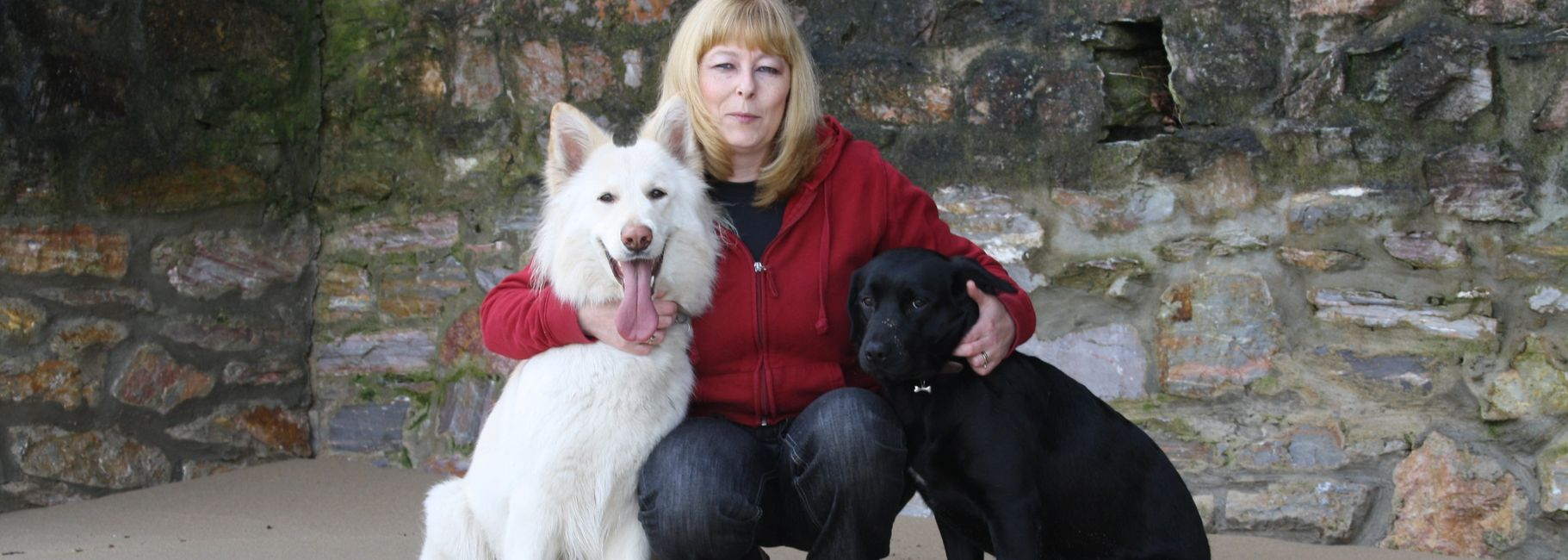 With my two rescues GSD, Cassie and Lab/Staff X, Holly.