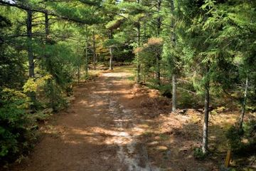 Back in site-Wooded with Shade Available camping area within site: 30' Wide X 80' Long