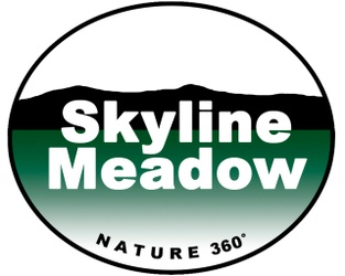 Skyline Meadow