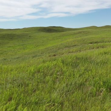 Flying A Ranch Near Thedford, NE Farm and Ranch Real Estate Nebraska Land Nebraska Ranch For Sale