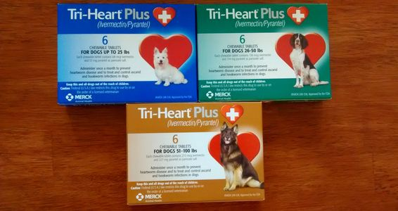 Tri-Heart Heartworm Preventative and Dewormer
