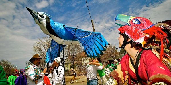 Blue Jay (Backpack Puppet) for Mayday 2013,