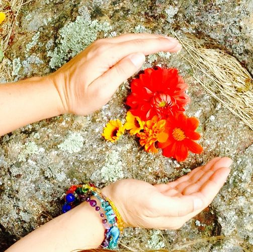 Healing Hands placed around wild mountain flowers