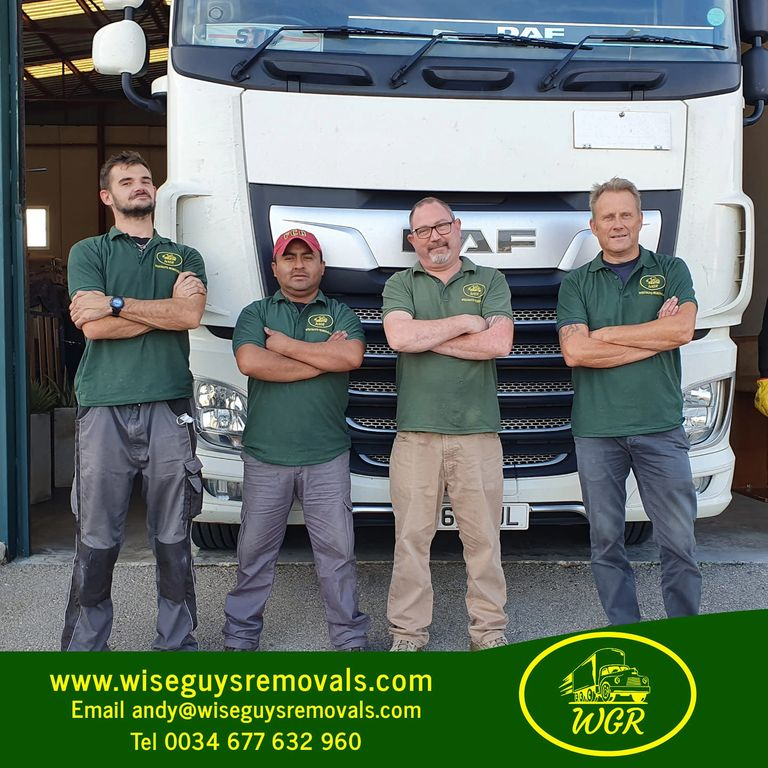 Wiseguys Removals of Alicante