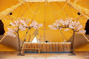 Make a statement at your wedding or any event with our stunning canopy blossom trees.