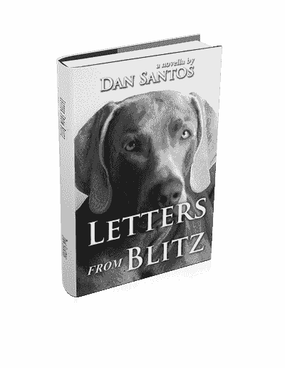 3D photo of book Letters from Blitz depicting the Weimaraner dog's face