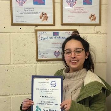 Level 3 Dog Grooming Qualifications Dog First Aid Emergency Canine Care Certification Dog Groomer boston skegness spilsby bennington  Ultimutt Pawfection Dog Grooming dog groomers