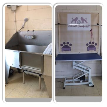 Ultimutt Pawfection's Dog grooming salon Dog bath grooming boston lincolnshire Groomers Grooming