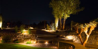 Plants and walkways lit with outdoor lighting