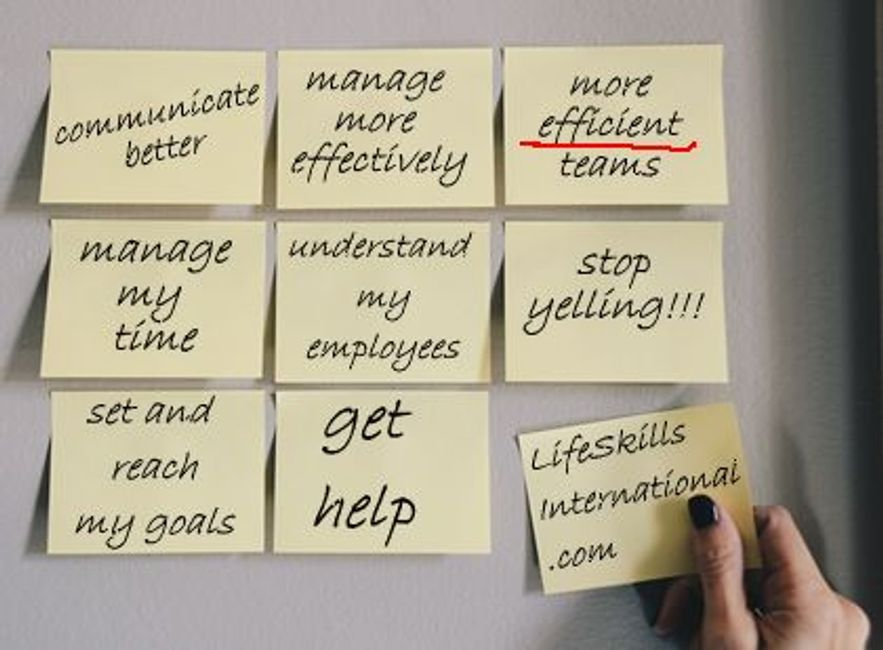 communication, manage, teams, time management, work with different employees, handle stress, goals