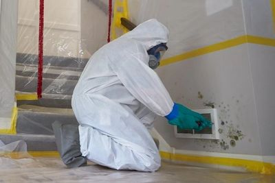 Mold remediation cost can vary from the low end of 500 and upwards 5,000