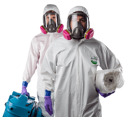 Post-Remediation Verification                          - Mold Remediation Clearance Testing