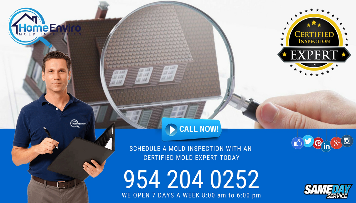 Visible mold inspection is performed by a Home Enviro certified mold inspector