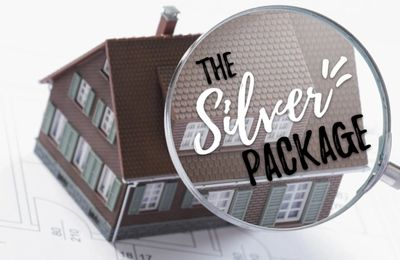 Home Enviro All Inclusive Silver Package - Air Quality Testing and Mold Inspection $275