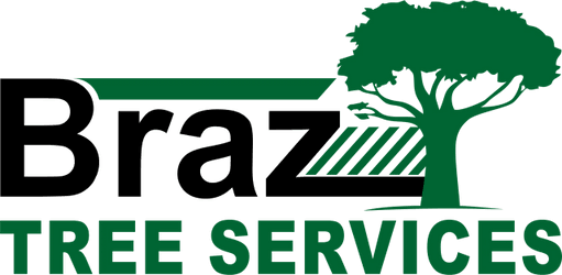 Braz Tree Services