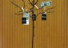 Brown Money Tree, a lovely way to shower the celebrated with generous gifts!