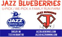 Jazz U-Pick/We-Pick Blueberries
