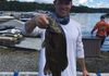 9/15/18 Greenwood Lake Open Buddy Johnny T. holding his lunker smallie that weighed 4.09lbs