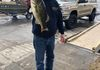 Swartswood Lake 3/30/19 Mike Rinaldi weighed in 1 fish for 3.60lbs