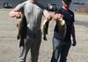 Monksville Reservoir Open Buddy 4/13/19 Joe R. & Andy R. took 2nd today with 3 fish for 8.80lbs