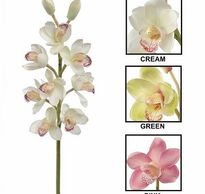 Flower District NYC  Wholesale Flowers  Flower Supply Flower Market NYC Orchids