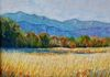 """Mountain Medow in Fall""  pastel"