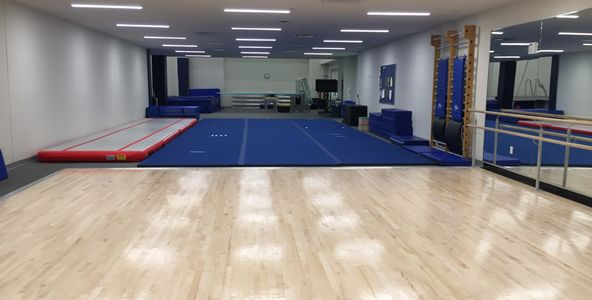Dryland training area including ballet floor, tumbling floor, and dryboards