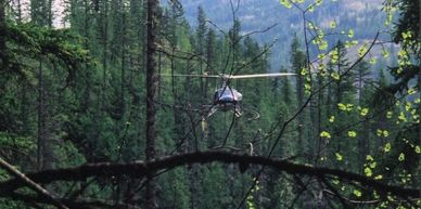 bell 204 helicopter logging