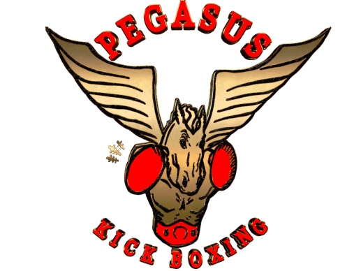 Pegasus Academy Of Fitness & Martial Arts