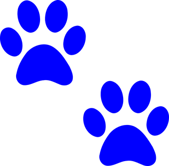 Companion Animal Rescue and Medical Assistance (CARMA)