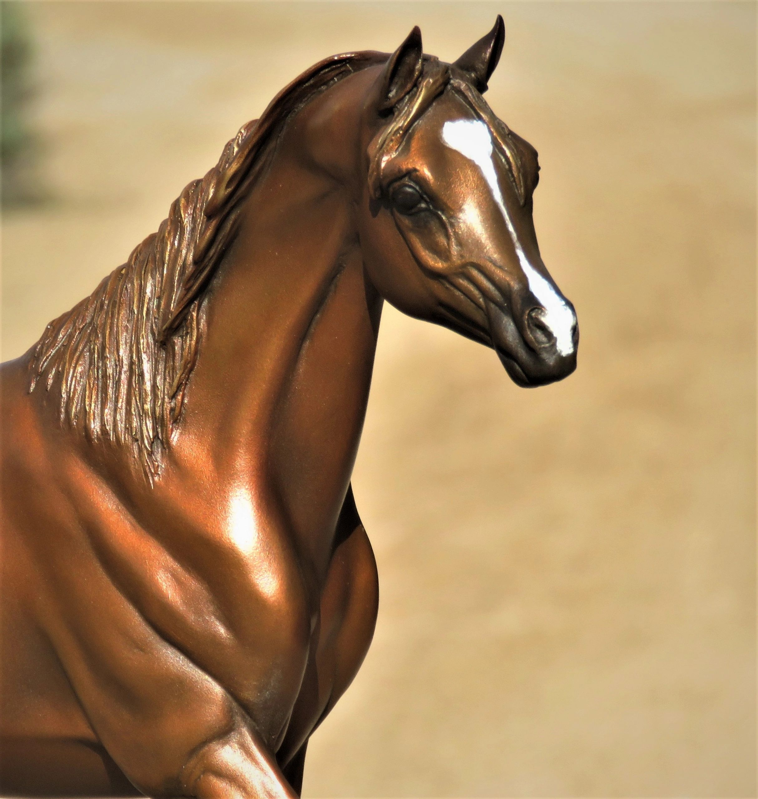 Equine Bronze Commission.  J. Anne Butler can sculpt your  commission of any subject in any size