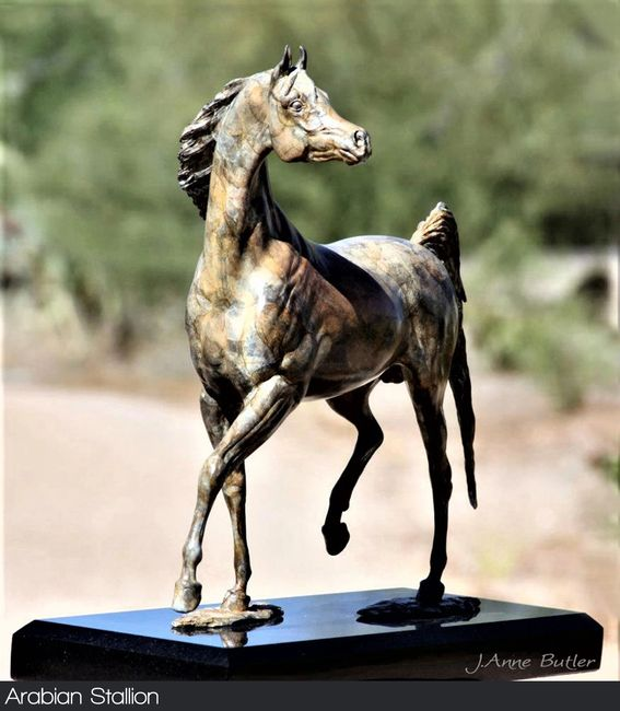 Arabian Horse Bronze Sculpture in modern contemporary patina