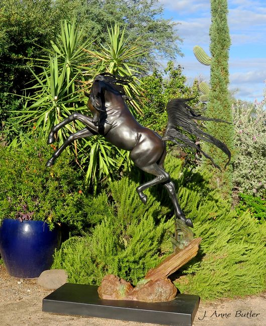 Freedom life size Arabian Horse Bronze Sculpture by J. Anne Butler