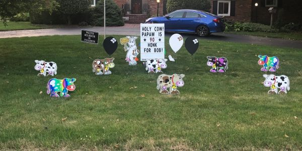 Holy Cow Birthday Yard Sign Rental Indianapolis, Storks and More Yard Greetings