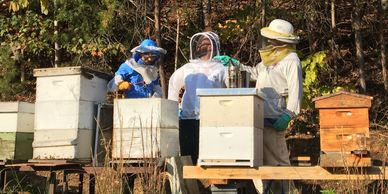 Local beekeepers take a second to strike a pose between inspecting the hives.