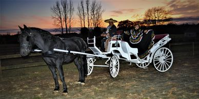 Rent our carriage for your wedding, quinceanera, graduation or to pick up your date in style.