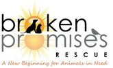 Animal rescue and adoption services, including dogs and cats
