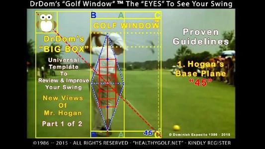 "GOLF WINDOW® -- The 1st ""CUBIC MAP"" To Assist Golf Instruction. -- Click To See Back & Forward Swing"