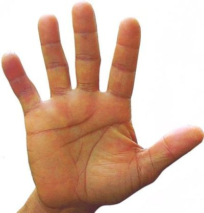 "SQUARE YOUR PALM & SEE DIAGONAL FROM LOWER CORNER TO INDEX BASE!/ ""ARCH WRIST"" FOR ""STRAIGHT LINE!"""