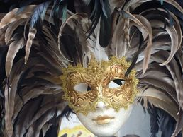 mask with black and white feathers