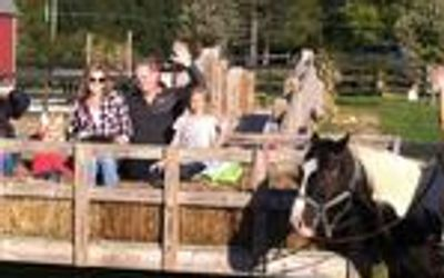 Hayride Going on Trail