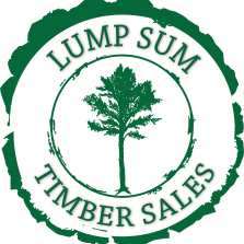 Lump Sum Timber Sales header icon