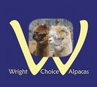 Wright Choice Alpacas