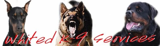 Whited K-9 Services, Inc.