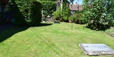 Front lawn after mow and with hedges trimmed