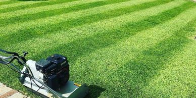 Do you love the manicured look that only a cylinder mower provides ?